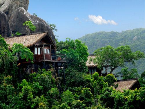 必游站:三亚热带天堂森林公园图片