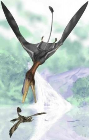 图片简介:  已灭绝的25种史前生物; 飞行爬行动物; 已灭绝的25种史前