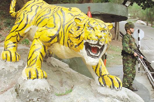 最近被打的老虎