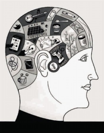 研究发现智力可由训练提高 发呆可增强创造力