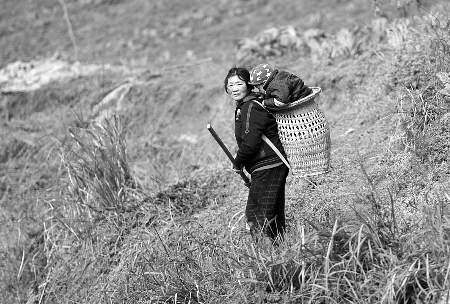 孙儿男士李露芳的背篓:心愿快快站起来头型哪种婆婆显得胖点图片