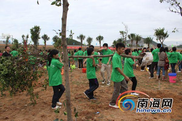 三亚植树造林现场,学生们在搬树苗(南海网见习记者马伟元摄)