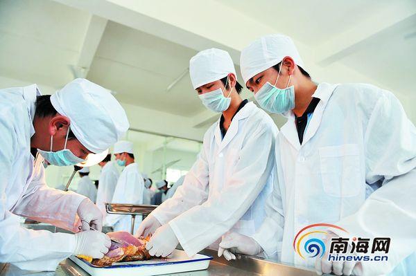 海南省农业学校学生在操作动物解剖
