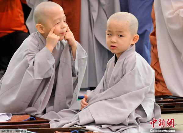 """在jogye寺内举行了小男孩剃度仪式,9名""""小正太""""被剃成小和尚,将在寺庙"""