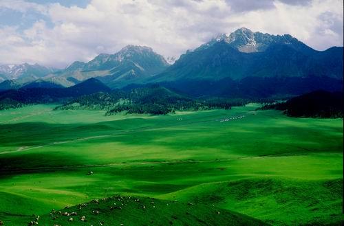 新疆沙湾人口