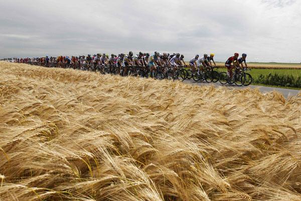 环法第二赛段争夺激烈 风吹麦浪景色优美