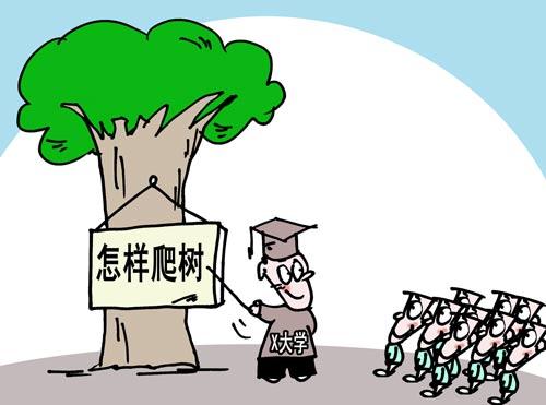 厦门大学拟新学期推出爬树课 增加学生逃生技能