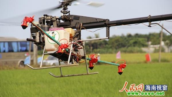 海南首次用无人驾驶直升飞机喷农药(组图); 省首次无人驾驶直升飞机