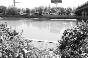 """""""   高先生认为,在济南的景区里存在饭店的情况比较普遍,如大明湖景"""