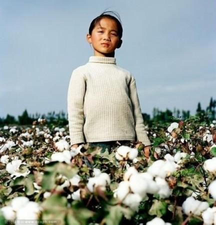 这个小姑娘才刚10岁,但是已经是这个棉田的采棉工.