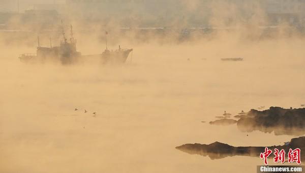 辽宁大连一海湾出现蒸汽雾宛如仙境的水墨画[组图]图片