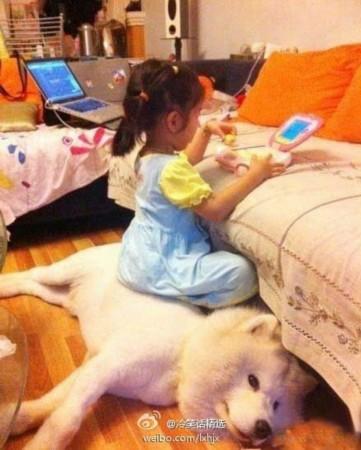 小孩 一起/治疗系萌图来袭(当小孩和狗狗一起养)。