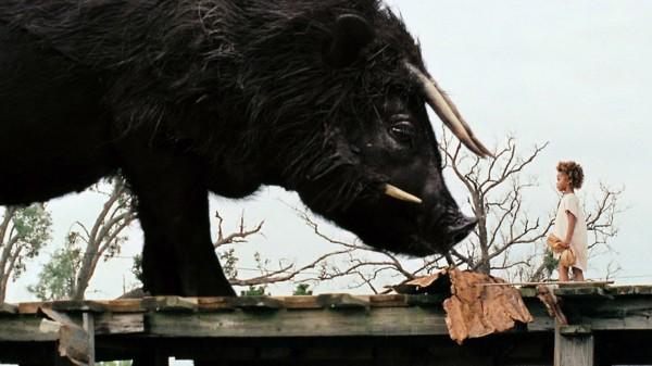 南方的野兽_奥斯卡最佳电影提名影片之——《南方的野兽》_新闻_南海网
