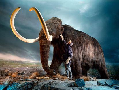 复活灭绝动物能带来什么:减轻人类曾犯下罪行