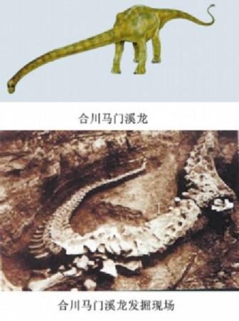 盘点中国最著名恐龙:带羽毛的暴龙类恐龙[组图]__海南图片