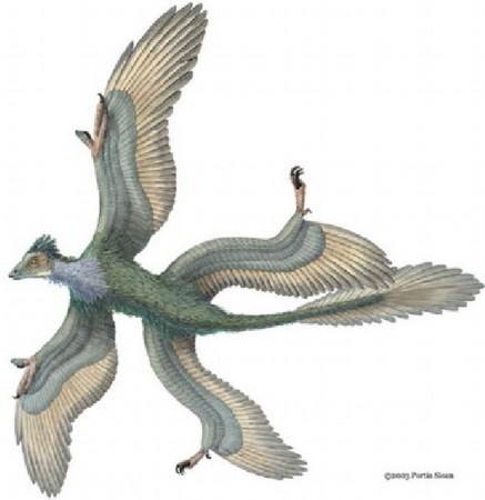 盘点中国发现最著名恐龙:中国第一只蜥脚类恐龙__海南图片