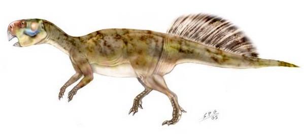 中国科学家研究发现鹦鹉嘴恐龙像人类一样行走__海南图片