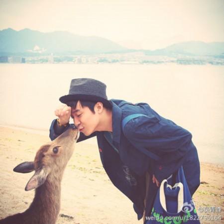 青峰与小鹿相处极为和谐,亲吻的动作也呆萌可爱,不少粉丝都称赞他十分