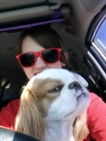 可爱动物斜眼表情大比拼