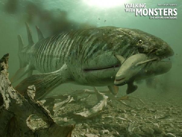 海洋/海洋中的猛兽:龙王鲸是渐新世的海洋霸王__海...