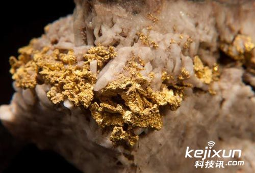 科学家发现独特细菌可点石成金!将离子变金子