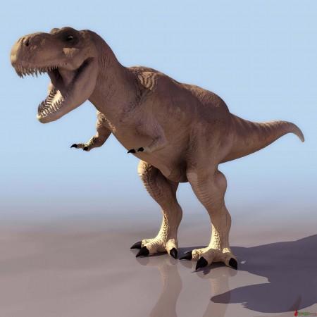 美国史密森尼博物馆将迎取罕见的霸王龙骨骼图片 31280 450x450
