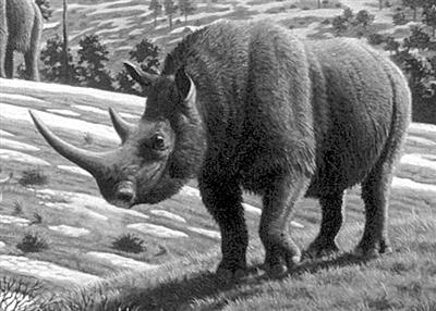 盘点有望复活的已灭绝动物:恐龙无望(图)