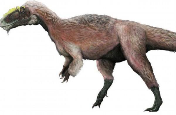 十大不可思议又真实存在的恐龙:朋克恐龙/组图__海南图片