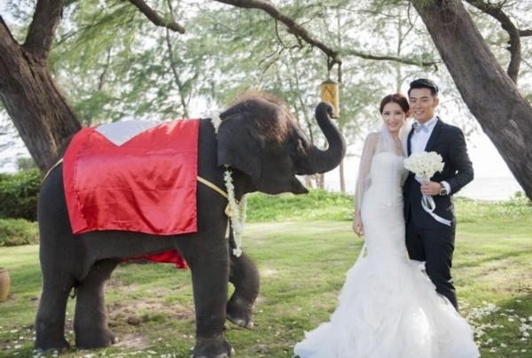 陈赫普吉岛大婚黑白搞笑多款婚纱照曝光