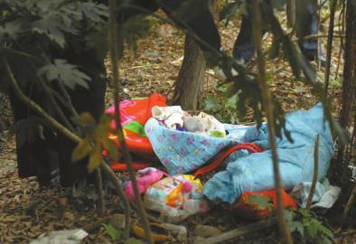 女婴刚出生被弃绿化带 外表无畸形疑受冻身亡