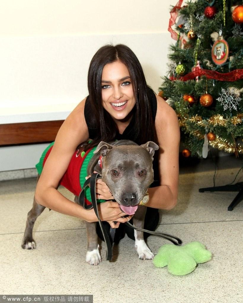 2013年12月10日,纽约,伊莲娜·莎伊克携爱犬出席某活动.