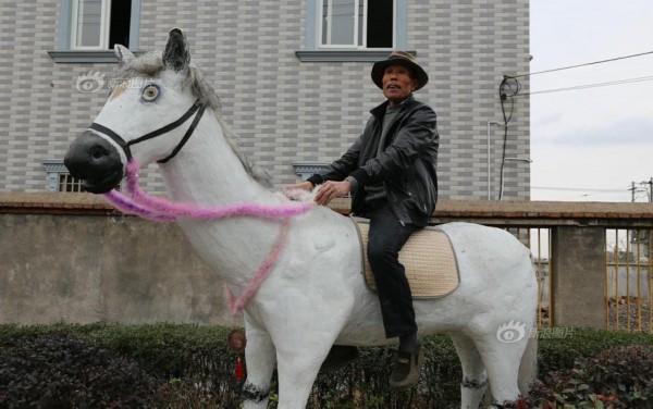 """浙江余姚农民在家门口自建""""动物园"""""""