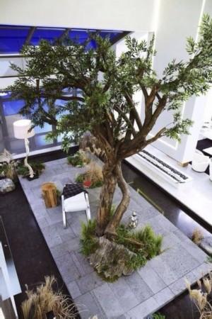 细心的粉丝发现教授家中种的树正是连理枝,圆满结局的可能又大了一