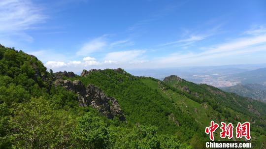 河北丰宁 县发现三种国家珍稀野生兰科植物 图高清图片