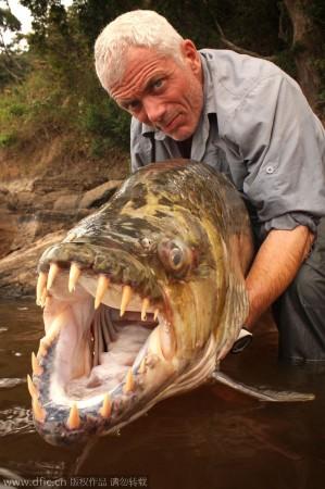 惊爆眼球的奇葩深海生物:巨型食人鱼牙齿尖锐