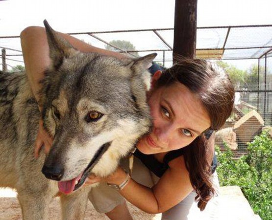 女记者亲密接触野生动物 蛇缠身和狼接吻与猎豹同眠!