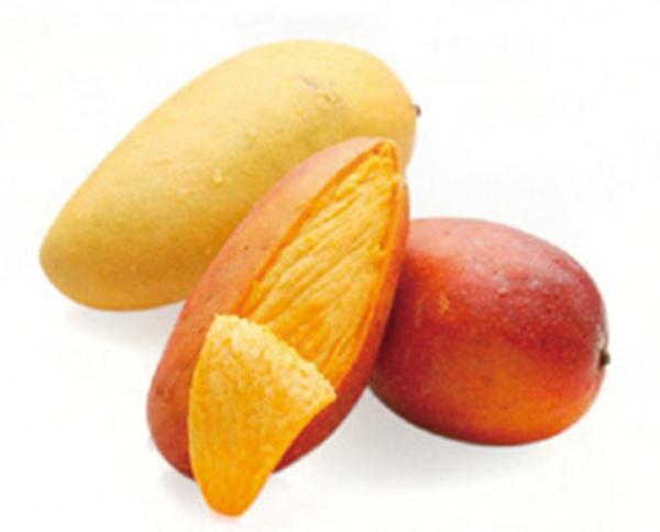 七彩海南热带水果:热带水果百科田野图片