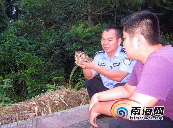 琼海7旬老翁非法猎捕国家二级保护野生动物被刑拘