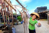 南中国海上的西沙渔民