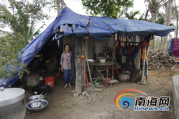 <b>海口三江农场因灾倒损房屋重建完毕村民迁新居过年</b>