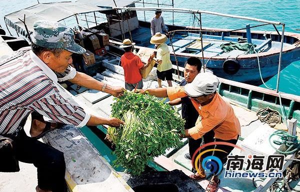 年货送到三沙岛礁上北岛条件发生翻天覆地变化