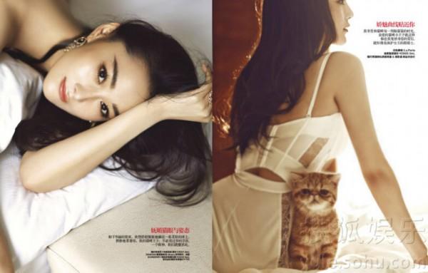 搜狐娱乐讯近日,张馨予拍摄时尚大片,与猫咪一同出镜,演绎猫性女人