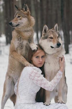 真人版的美女与野兽