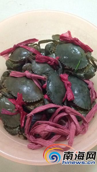 捆螃蟹用超标绳绳子卖出螃蟹价海口4摊贩被查处