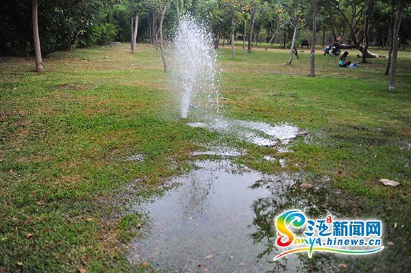 三亚榆亚路水管破裂成喷泉水流成河市民大呼痛心