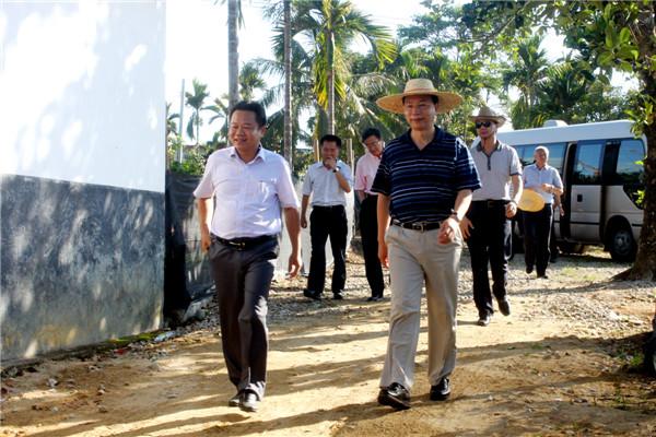 预计王大爷家今年_李大爷家有一块靠墙的苗圃,长和宽分别是12米和10米.