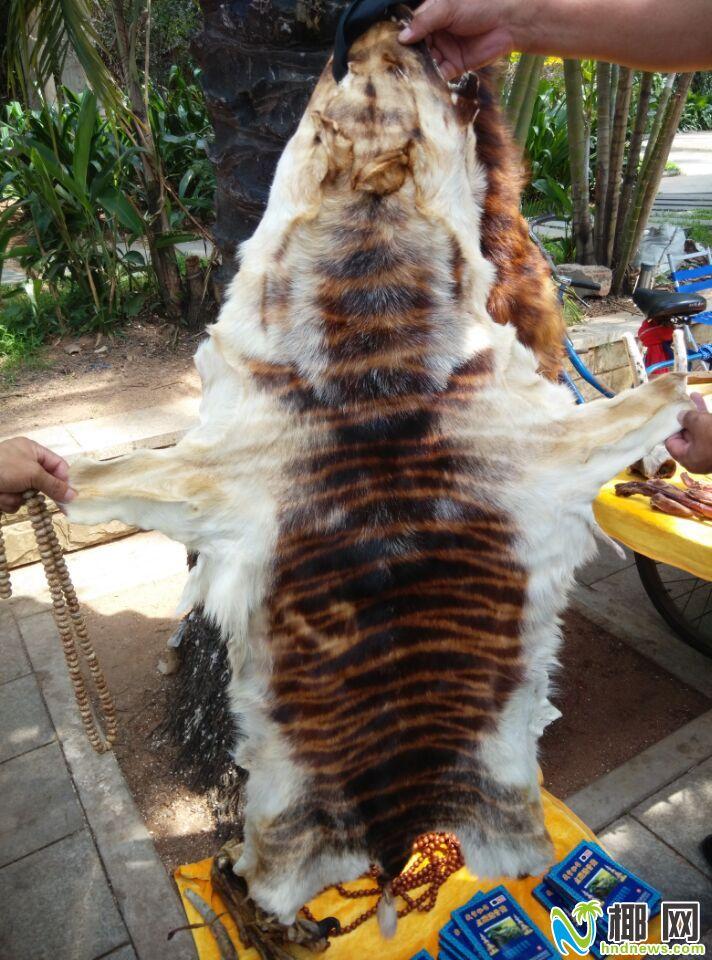 海口公园路占道经营猖狂受质疑有人明目张胆卖虎皮