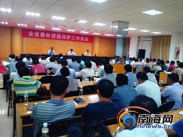 海南召开森林保护工作会议通报万宁重阳木被盗案件