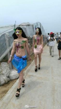 组图:河南一葡萄园开园 美女模特裸体出镜