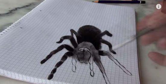 纸折蜘蛛步骤图解图片